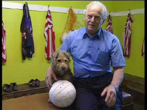 The dog that plays football - Barking Mad - BBC Pets
