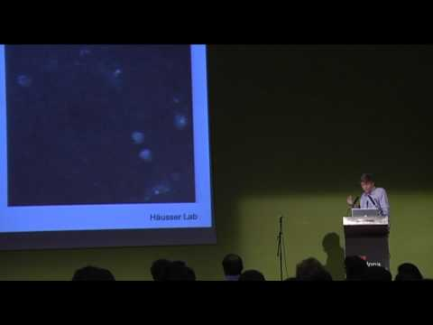 Neuronal code, How neurons talk to create behaviors: Michael Hausser at TEDxBarcelona