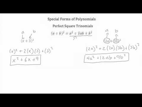 Operations with Polynomials Special Products