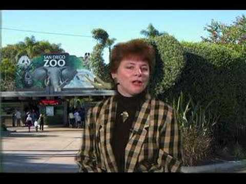 San Diego Zoo at 90: White Elephants?