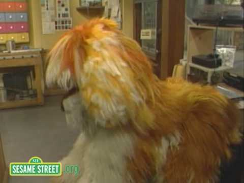 Sesame Street: In and Out With Barkley