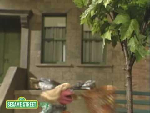 Sesame Street: The Empty Box