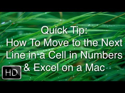 Quick Tip - How To Move to the Next Line in a Cell in Numbers & Excel on a Mac