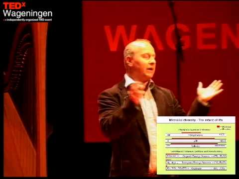 The Fascinating World of Microbes:  George Kowalchuk at TEDxWageningen