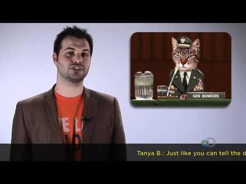 TWiDN: Sex Robots Predicted and Pet Psychics Debunked