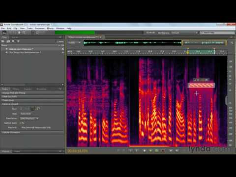 Soundbooth: How to remove unwanted sounds | lynda.com tutorial