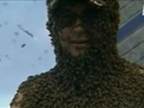 Weird, True & Freaky- Coat of Killer Bees