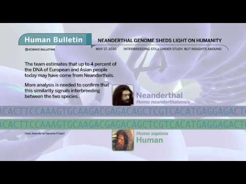 Science Bulletins: Neanderthal Genome Sheds Light on Humanity