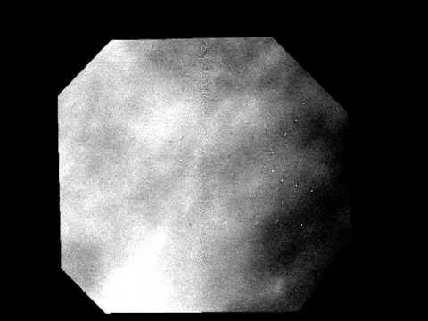 Venus Express and transit of Venus