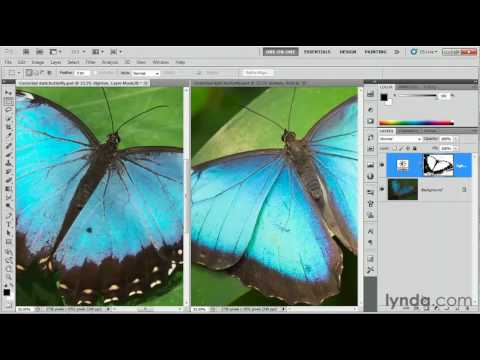 Photoshop: Correcting color with a layer mask | lynda.com tutorial