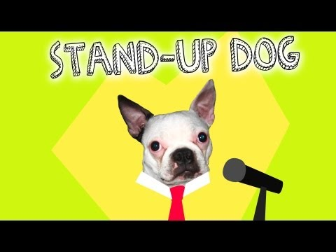 Stand-Up Dog: Open Mic