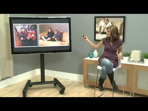 Review of Images - Pets and People Photography with Vicki Taufer