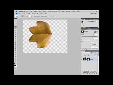 Photoshop: Selecting an object and creating a drop shadow | lynda.com