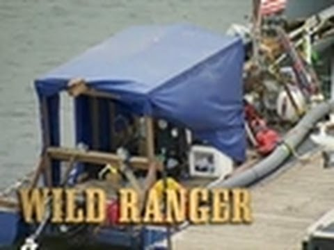 The Wild Ranger | Bering Sea Gold