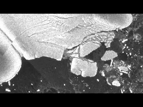 NASA | Tohoku Tsunami Creates Antarctic Icebergs