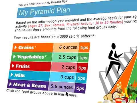 USDA Food Pyramid Explained