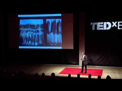 TEDxEast - Thomas Keller - The reach of a restaurant