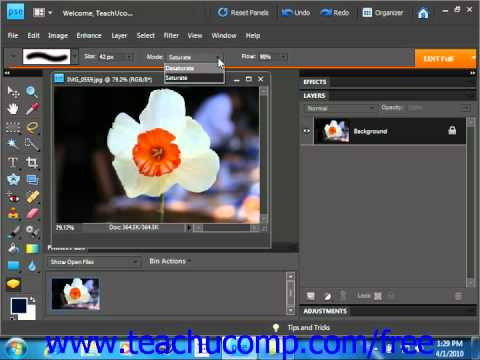 Photoshop Elements 9.0 Tutorial The Sponge Tool Adobe Training Lesson 13.8