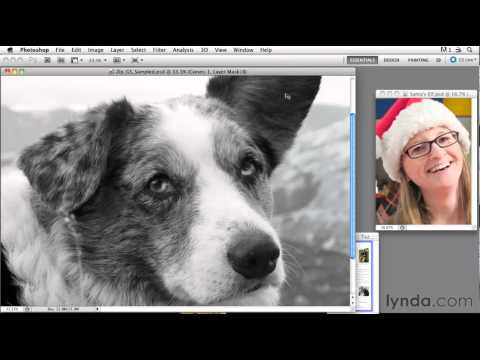 Photo scanning tutorial: Working with pixels | lynda.com