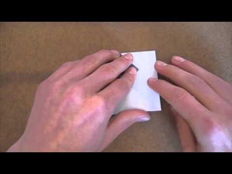 Origami Clam