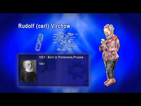 Top 100 Greatest Scientist in History For Kids(Preschool) - RUDOLF CARL VIRCHOW