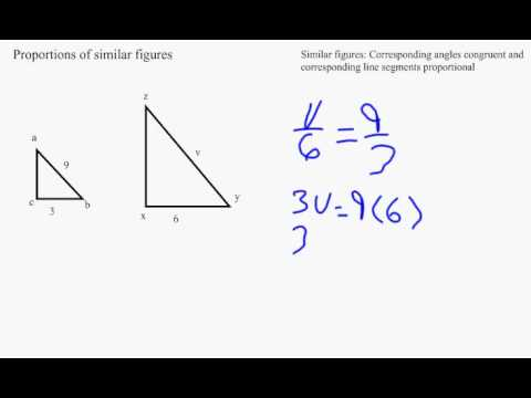 proportion and similar figures