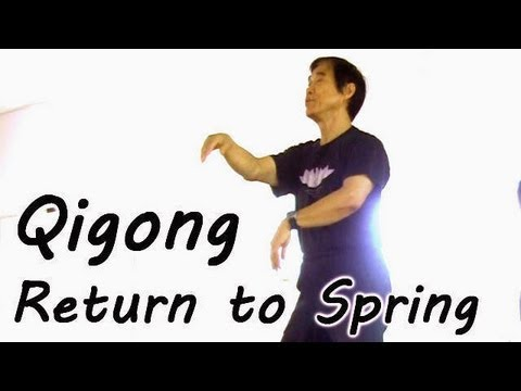 Qigong How To by Mater Li Junfeng, Sheng Zhen Healing Art, AOMA Austin