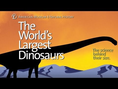 Sneak Peek: World's Largest Dinosaurs Special Exhibition