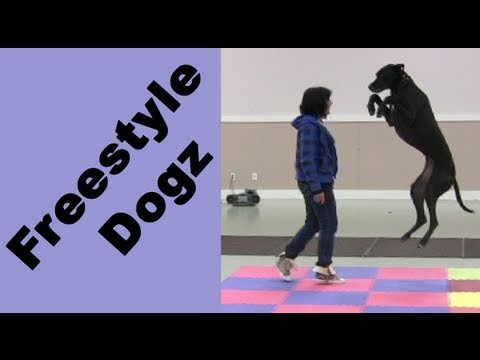 Pamela and Emily Vancouver Island Canine Freestyle Seminar