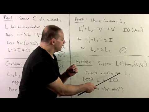 RT4.2. Schur's Lemma (Expanded)