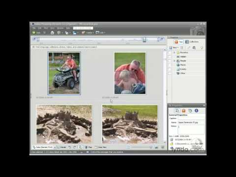 Photoshop Elements: Selecting, inspecting, and rotating | lynda.com