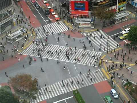 Studio 360 in Japan: Shibuya intersection