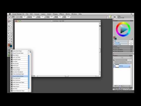 Painter, Wacom: Understanding Tool palette selectors | lynda.com