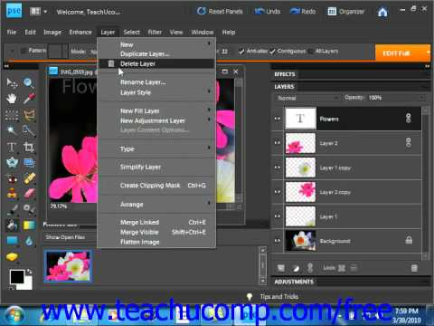 Photoshop Elements 9.0 Tutorial Merging & Flattening Layers Adobe Training Lesson 10.8