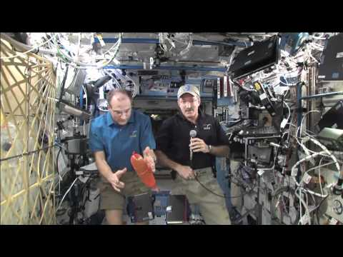 Station Crew Fields Questions From YouTube Viewers