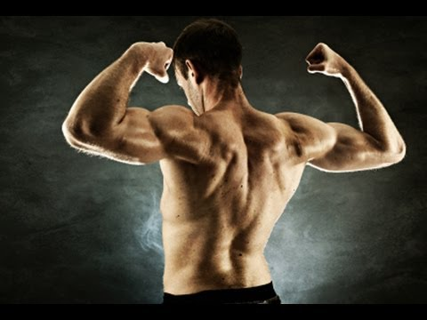 Total Upper Body Home Workout : NO Equipment Muscle Building