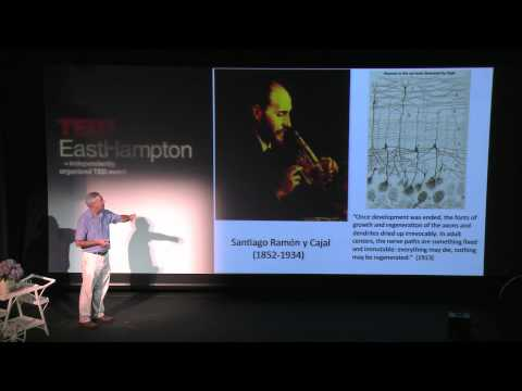 TEDxEastHampton - Paul Roossin on the Neurology of Dreams