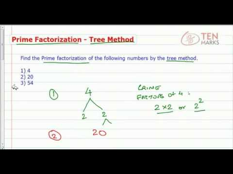 Prime Factorization using Tree Method
