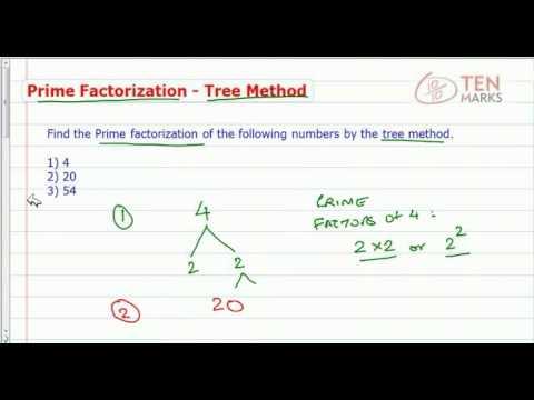 Prime Factorization using Tree Method