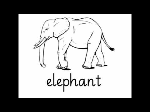 The Alphabet Letter E