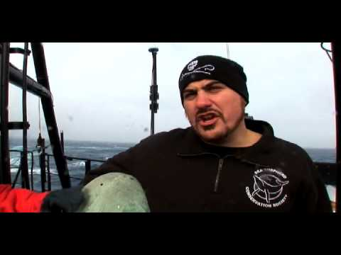 Whale Wars: Flash Bangs