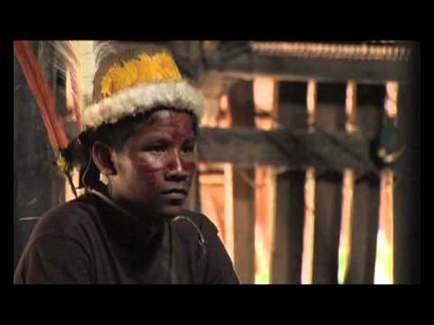 Traditional knowledge of the jaguar shamans of Yuruparí (Colombia)