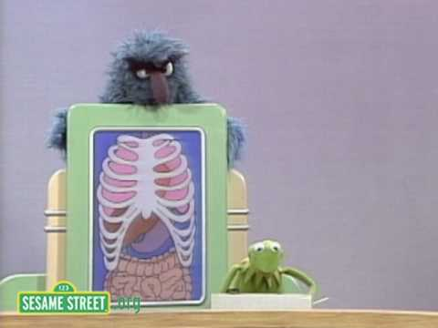 Sesame Street: What's Inside Herry?