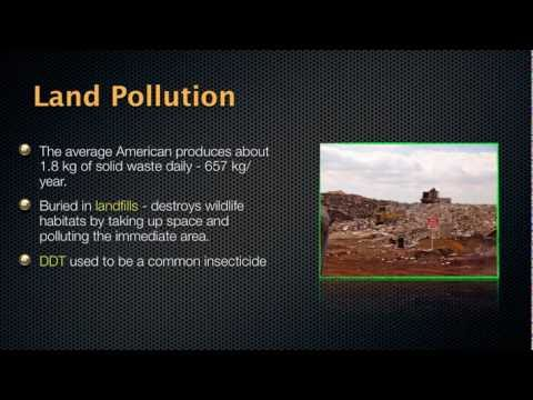 Vanishing Species - Biological Diversity and Conservation