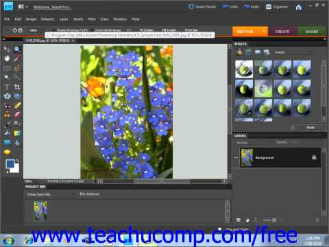 Photoshop Elements 9.0 Tutorial Image Magnification Adobe Training Lesson 3.7