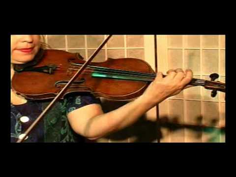 "Violin Lesson - Song Demonstration -""Times Are Getting Hard"""