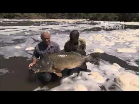 River Monsters: Think Like a Fish