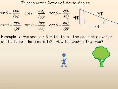 Trigonometric Ratios of Acute Angles Part 1