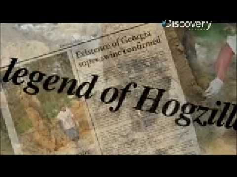 Pig Bomb - Hogzilla Lives
