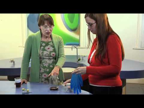 Primary Science Demonstrations: Freaky Hand